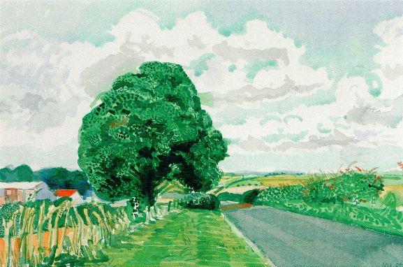 road and tree near wetwang by David Hockney