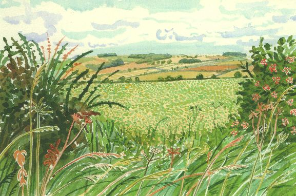 A Gap in the Hedgerow by David Hockney