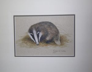 Badger by Robert E Fuller