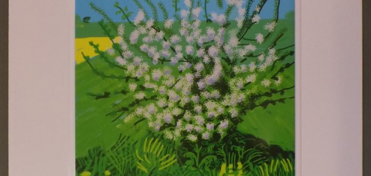 30th of April 2011 – The Arrival of Spring – by David Hockney