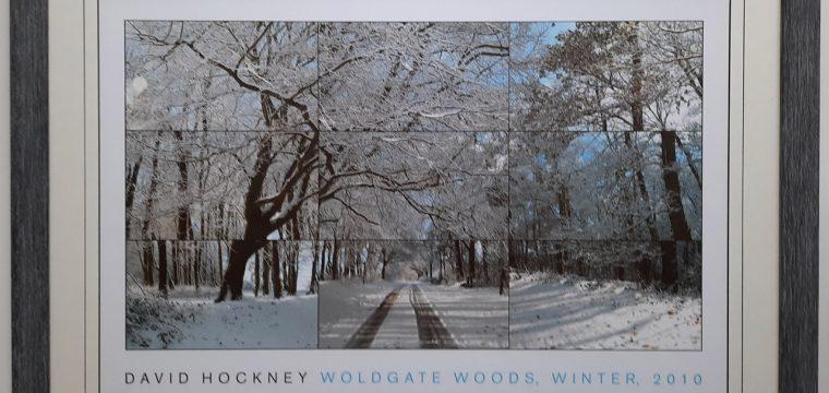 WoldgateWoods1280