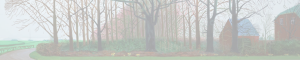 cropped-headertrees100opacity.png
